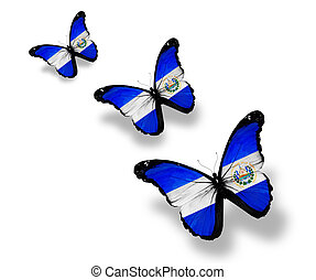 Three Salvador flag butterflies, isolated on white