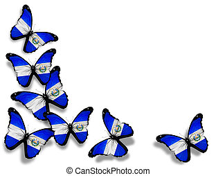 Salvador flag butterflies, isolated on white background