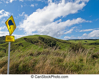 Attention Kiwi Crossing Roadsign and NZ landscape - New...