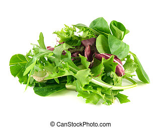 Salad rucola, frisee, radicchio and lambs lettuce - Salad...