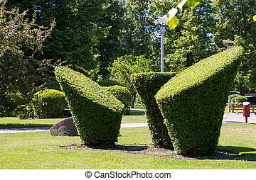 Green Topiary in a city park