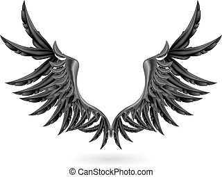 Black wings, vector