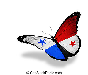 Panama flag butterfly flying, isolated on white background