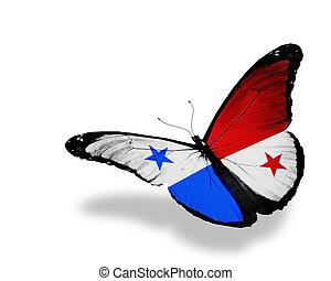 Panamá, bandera, mariposa, vuelo, aislado, blanco,...