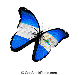 Nicaragua flag butterfly flying, isolated on white...