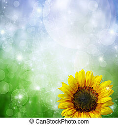 Abstract  background with sunflower  and  bokeh lights