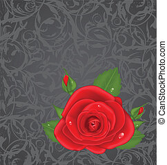 Close-up red rose isolated on grunge floral background