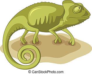 Chameleon, vector illustration