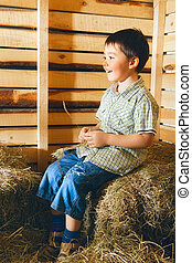 Boy on Hayloft - beautiful small boy on hayloft at sunny day