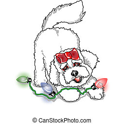 Poodle Bichon Frise Christmas Dog - Poodle or Bichon Frise...