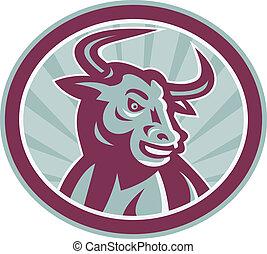 logo_bull_longhorn_frontiso