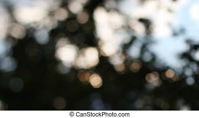 out of focus bokeh shot of sky and sunshine shining through...