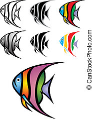 illustrated angelfish - nice illustrated angelfish isolated...