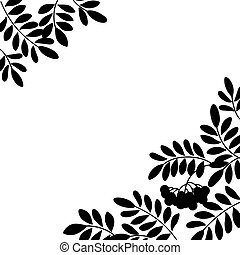 Rowanberry background, silhouette - Black and white...