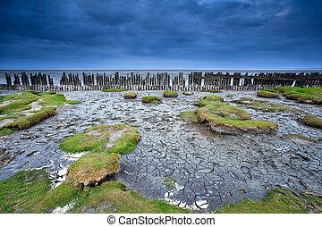 old wooden dike and mud at low tide, Moddergat, Netherlands...