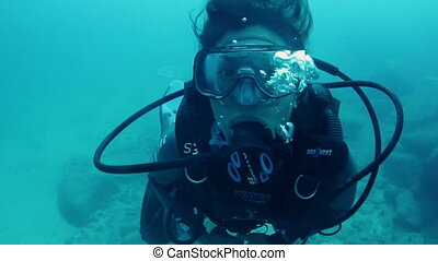 scuba diving off cozumel island, mexico, one of the worlds...