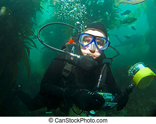 Close Up Diver in the Catalina Kelp - Close Up Diver in the...