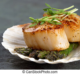 Seared scallops - Studio closeup of seared scallops,...