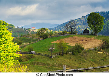 Spring rural landscape in the Carpathian mountains
