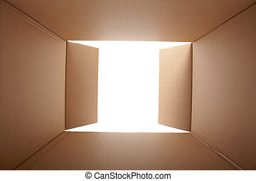 Cardboard box, inside view