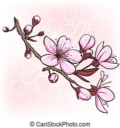Cherry blossom. Decorative floral illustration of sakura...