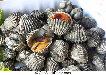 fresh cockles for sale