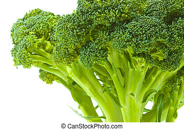 broccoli cabbage on white background