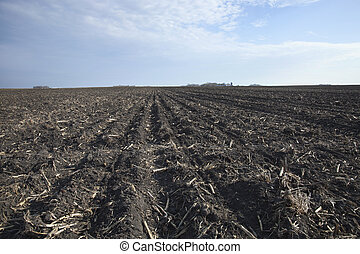Rich, black midwestern soil in plowed field ready for spring...