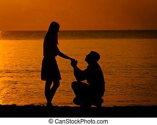 hombre, rodillas, Pregunte, mujer, casar