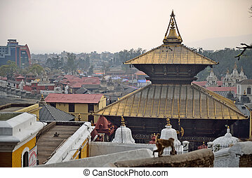 Pashupatinath Temple one of the most significant Hindu...