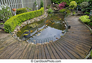 pond in a garden - pond with fish in a garden in The pond...