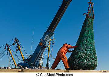 Unloading fish from the boat - fisherman unloads with a...