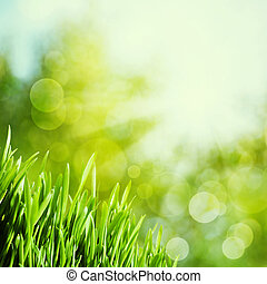 Abstract natural backgrounds with green grass and beauty...