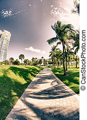 Detail of Miami, Florida