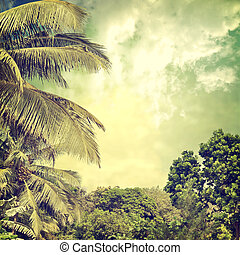 background-58 - grunge palm background