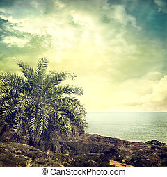 background-61 - Vintage palm background