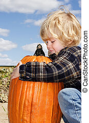 Pumpkin Love - Young boy picks up the pumpkin that he has...