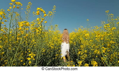 yellow blossoming field - Little girl going away through the...