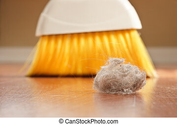 Dust Bunny - A large clump of dust being swept up with a...