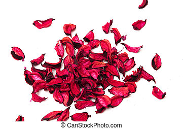 flower petals on a white background