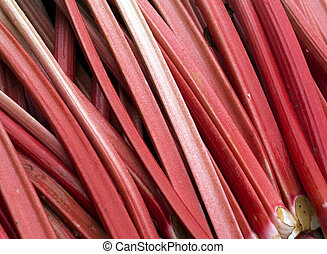 Rhubarb - Sticks of freshly cut rhubarb