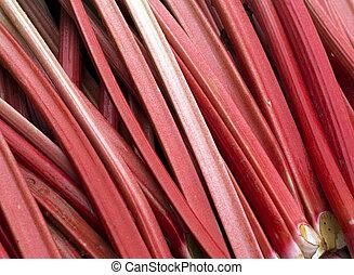 Rhubarb - Sticks of freshly cut rhubarb