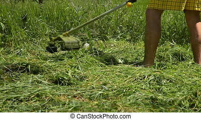 Grass Cutter - Man mowing the grass in the backyard with...