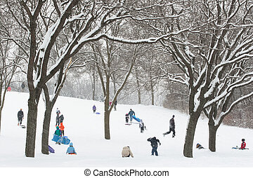 Snow day - Children sledding on a wooded hill