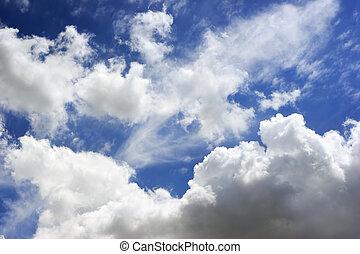 Cumulus Clouds - Beautiful white puffy clouds in a bright...