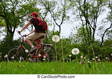 Enjoy the day - A person riding a bicycle on a spring day