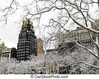 Winter Sycamore Bryant Park - Snow covered sycamore tree...