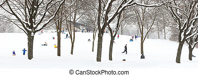 Sledding Hill - People sledding on a wooded hill