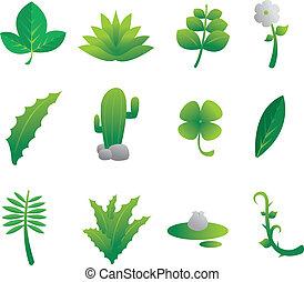Plants Nature Set
