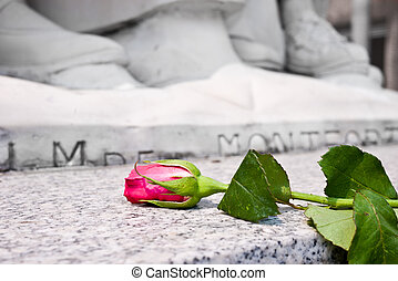 Flower for commemoration - Rose laying at the bottom of...